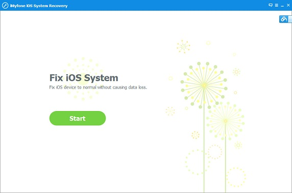 Fix iOS System Program Home